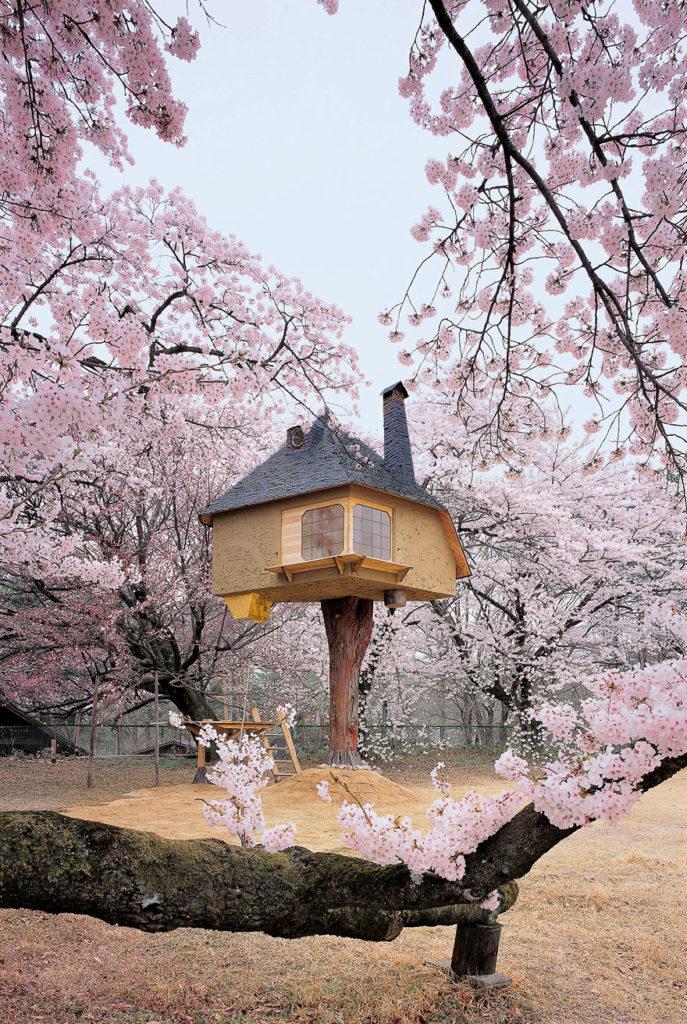 Çay Keyfi Ağaç Evi - Japonya