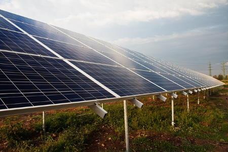 Güneş Enerjisi Santralleri Biyolojik Çeşitliliğe Faydalılar