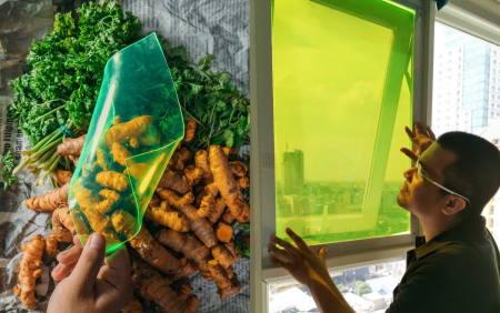 Güneşe İhtiyaç Duymayan Güneş Paneli Gıda Atıkları ile Yapıldı!