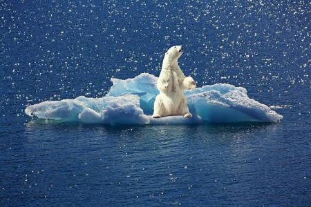 İklim Değişikliği Nedir? İklimin Kontrolden Çıktığına 10 İşaret!