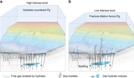 Metan Emisyonları Ay Etkisi ile Değişkenlik Gösteriyor (Solda yüksek su seviyesi metan gazını zeminde tutuyor; sağda ise su seviyesi azaldığı için basınç azalıyor ve metan su yüzeyine doğru çıkıyor.)