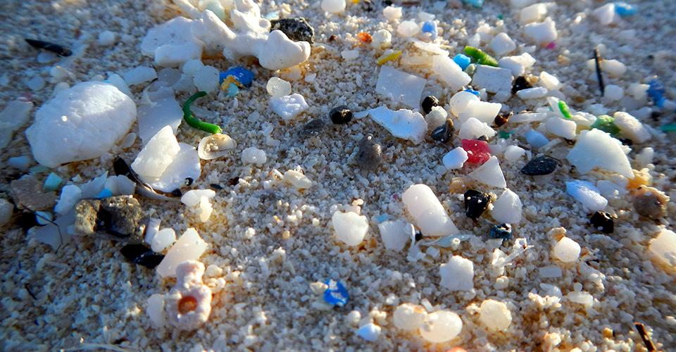 Plastik kirliliği
