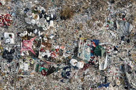 Mikroplastik Nedir ve Nasıl Oluşur? Kirliliği ve Zararları Nelerdir?