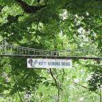 Hayvanlar için Vahşi Yaşam Köprüleri