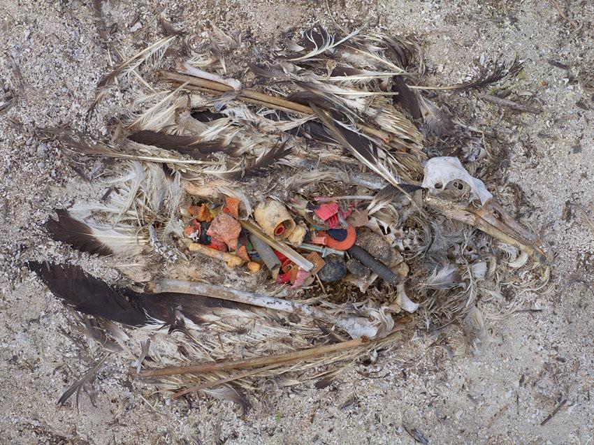 Plastik Ölüm