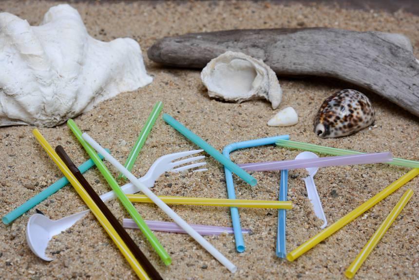 Avrupa'da tek kullanımlık plastik yasaklandı.