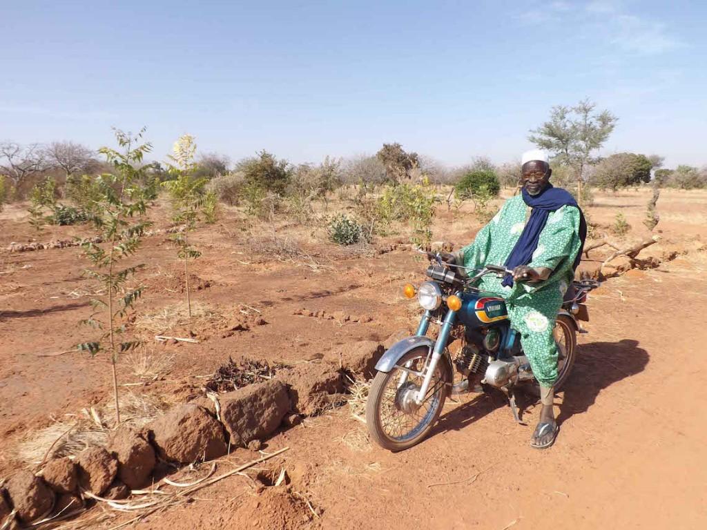 Çölleşmeye Son Veren Adam: Yacouba Sawadogo