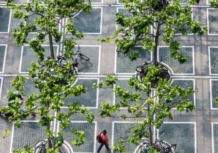 Yeşil Altyapı: Sürdürülebilir Su Yönetimi Nasıl Olur?