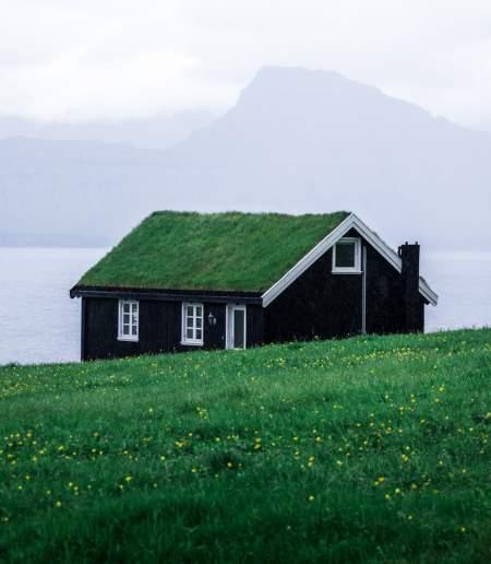 Yeşil Çatı Nedir?